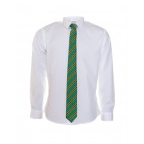 St Kevin's College TY Tie